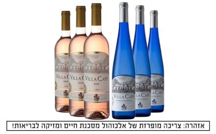 6 בקבוקי יין במשלוח עד הבית