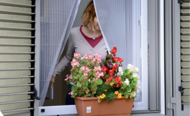 רשת נגד מעופפים לחלונות