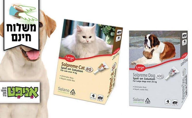 אמפולה נגד קרציות לכלב ולחתול