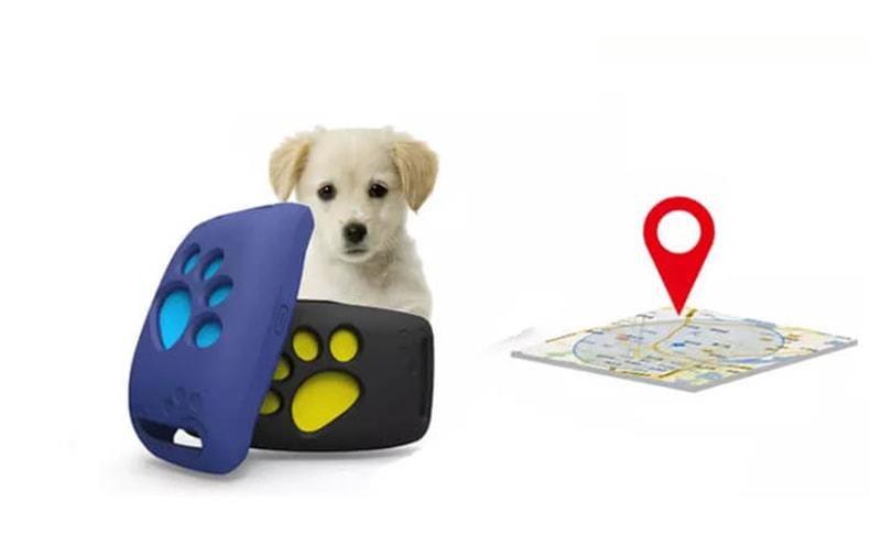 מכשיר איתור לכלבים וחתולים