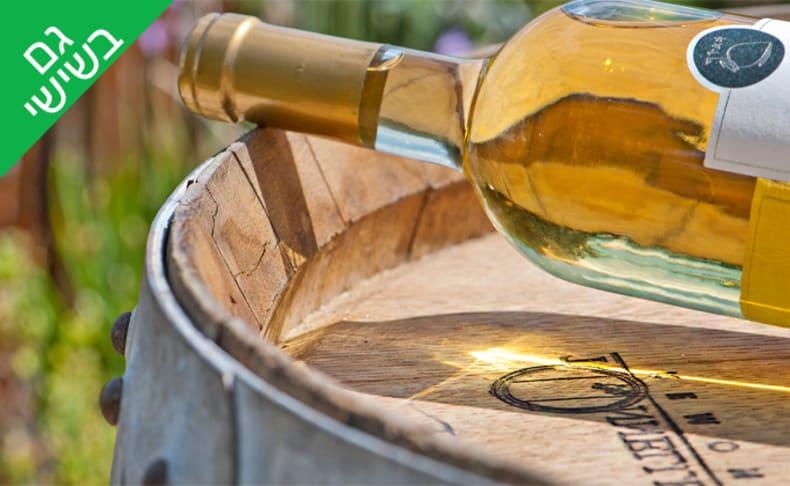 סיור וטעימות יין ביקב קדמא