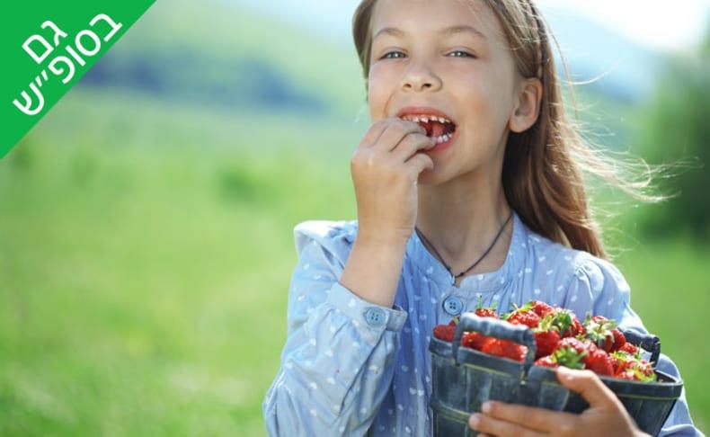 קטיף תותים ומתנפחים - קסם התות