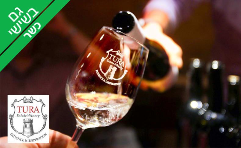 ביקור וטעימות יין - יקב טורא
