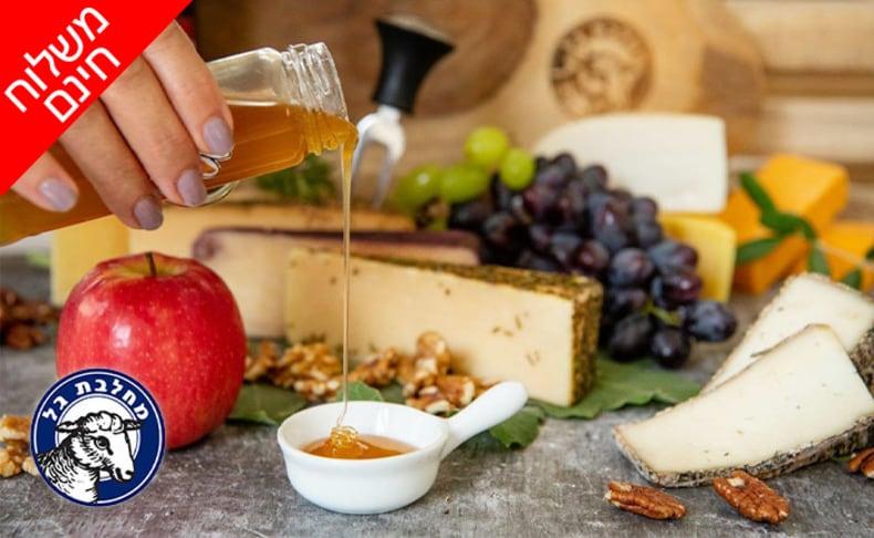 מארז גבינות כשרות ממחלבת גל